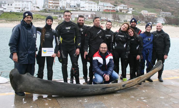 Mostra de óso de balea procedentes da caza antiga (época medieval e moderna, entre os séculos XIII-XVIII), recollidas no proxecto 'Galicia no lombo da balea'