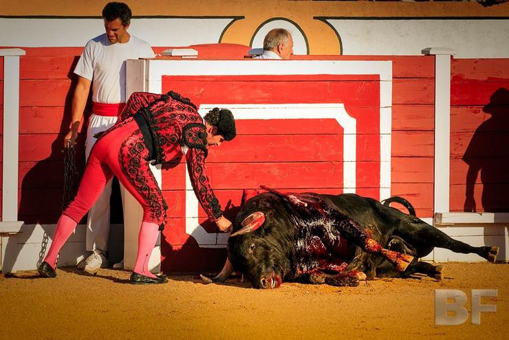 Imaxe do documental 'Bullfight', de Iago Prada.