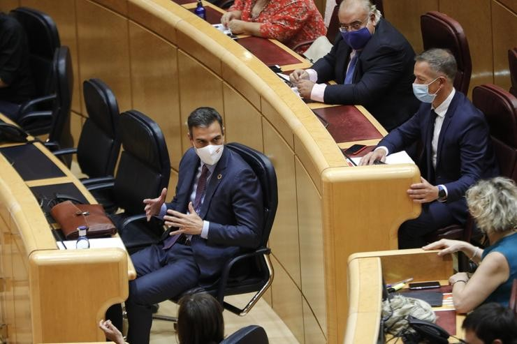 O presidente do Goberno, Pedro Sánchez, no hemiciclo do Senado.. Jesús Hellín - Europa Press